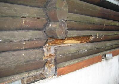 restaurering av tømmer ved råteskade – 11