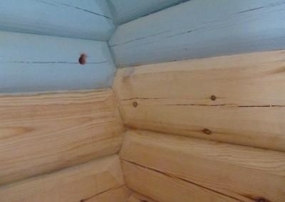 restaurering av tømmer ved råteskade-20