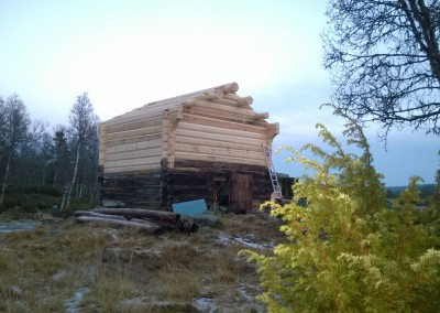 restaurering av tømmer ved råteskade-39